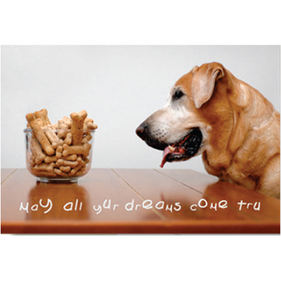 Goldfingers gifts dog speak may all your dreams birthday card bookmarktalkfo Image collections